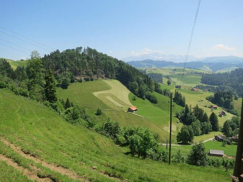 pfad Neckartal in Mogelsberg - fmpro