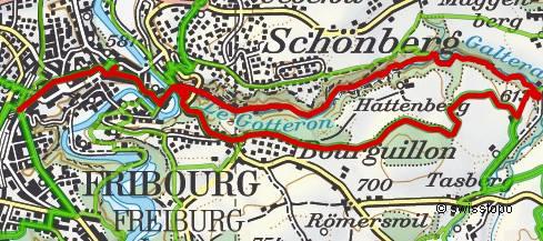 806 Fribourg Galterengraben / Gorges du Gotteron - Ameismüli ...